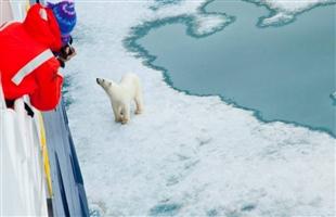 2021,北极无重油